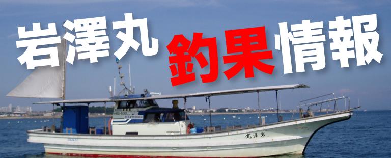 岩澤丸釣果情報